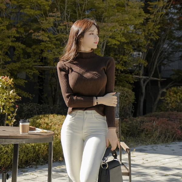 nt2396 얇은 배색 라인 포인트 슬림핏 골지 반폴라 니트 knit